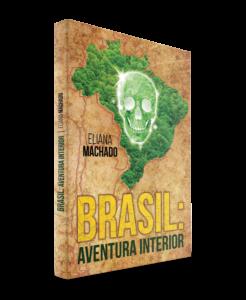 L'attribut alt de cette image est vide, son nom de fichier est 2.-BRASIL-AVENTURA-INTERIOR-246x300.png.